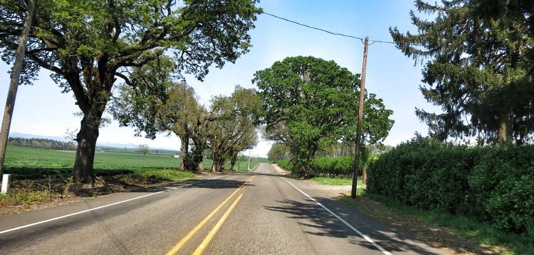 99W Highway Oregon