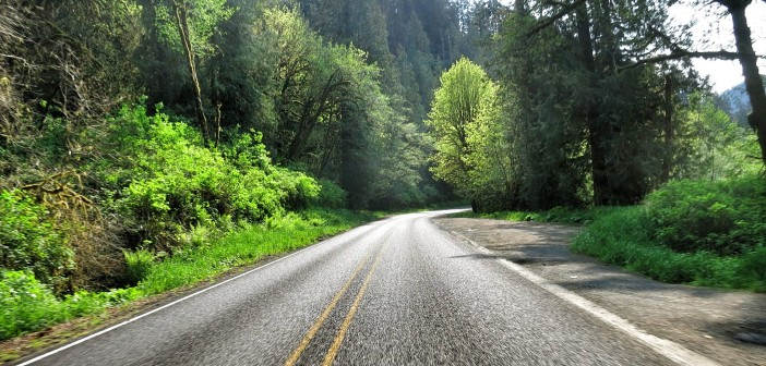 Alsea Highway (OR-34) , Waldport to Philomath