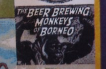 beer brewing monkeys of borneo