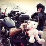 teddy bear motorcycle